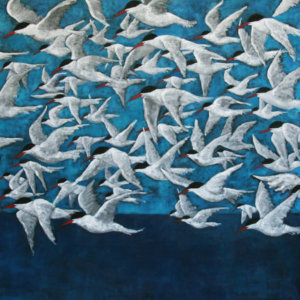 "Roseate Terns (Habitat Loss Series). Oil On Canvas. 36"" X 36"". 2013."