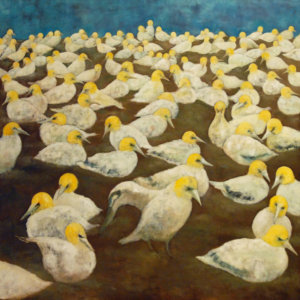 "Northern Gannets (Habitat Loss Series). Oil On Canvas. 36"" X 36"". 2008."