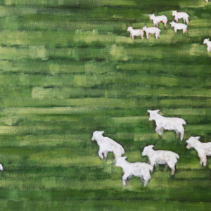 Sheep (detail). Oil On Canvas. 2010.