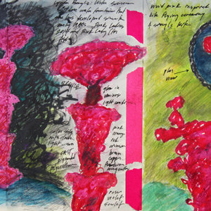 Fieldbook 23. Storm King Art Center. Pink Ladies. 2014