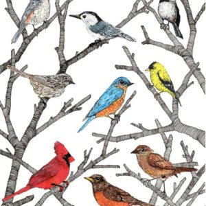 Some Birds You Might See. In The Winter, In 2018, In New York, 2018, Ink And Gouache On Paper, 11 X 8.5 In. (29.2 X 21.6 Cm)